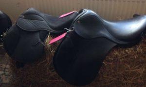 Devon Used Horse Tack For Sale – Healing Hooves Devon